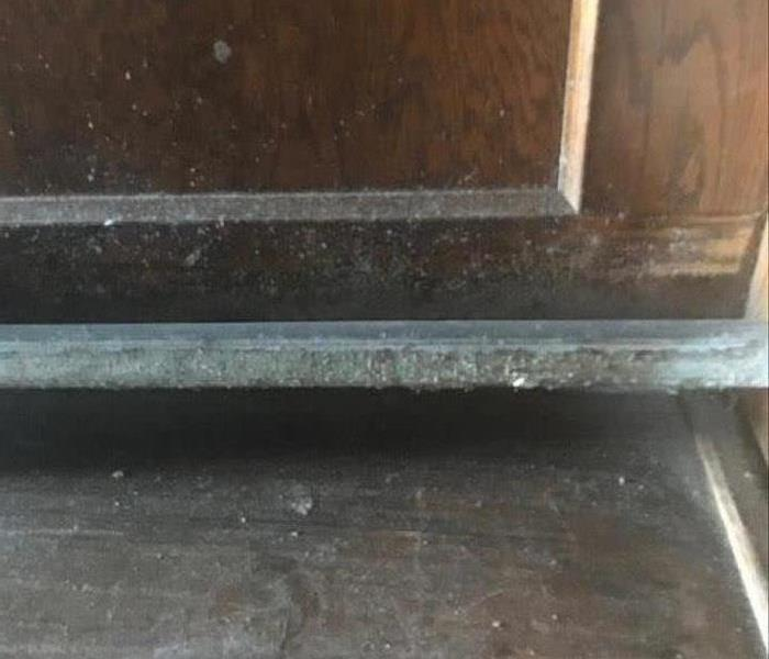 Commercial Large Commercial Mold Removal