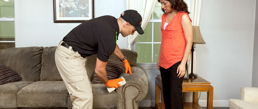 Gadsden, AL carpet upholstery cleaning